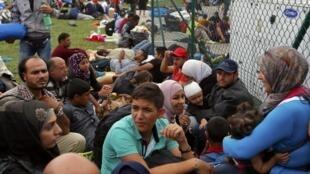滞留在克罗地亚与斯洛文尼亚边境的难民