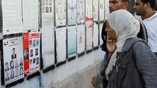 Voters look at election information in Tunis Sunday