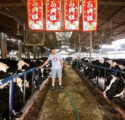 Alessandro tem um convênio com fazendas que fornecem 250 kg de leite que processa mensalmente para produzir 150 kg de queijo.