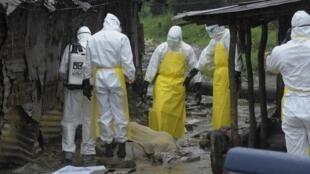 Вирус Эбола: медики вывозят тела умерших, Либерия, Монровия, 17 августа 2014 года