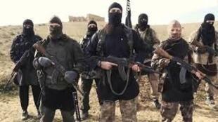 داعش در حال سازمان دهی مجدد و گسترش نفوذ است