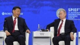 Chủ tịch Trung Quốc Tập Cận Bình (T) và tổng thống Nga Vladimir Putin tại Diễn đàn Kinh tế Saint-Pétersbourg, ngày 07/06/2019.