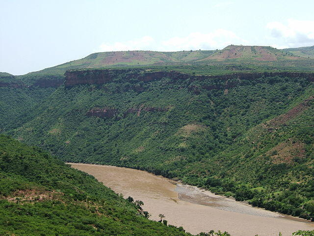 Le Nil Bleu, fleuve africain prenant sa source en Ethiopie.