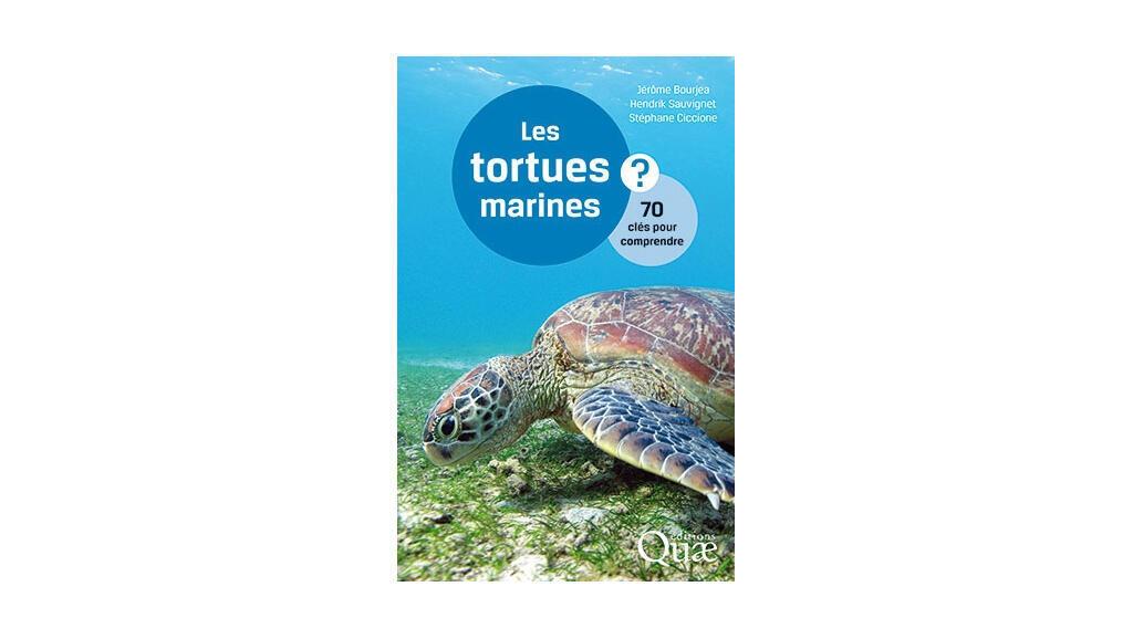 Couverture «Les tortues marines».