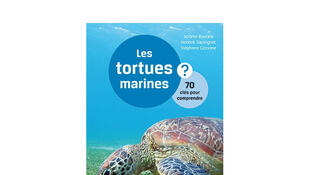 Couverture «Les tortues marines».