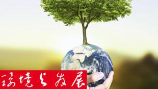 環境與發展