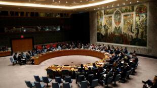 Hội Đồng Bảo An họp về Syria tại trụ sở Liên Hiệp Quốc ở New York (Hoa Kỳ), ngày 12/03/2018.