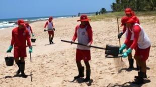 Các tình nguyện viên đang dọn dẹp bãi biển Mata Sao Joao, bang Bahia, 1 trong 9 bang của Brazil gánh chịu thảm họa dầu loang. Ảnh chụp ngày 26/10/2019.