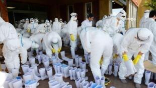 Des opérations de désinfection sont en cours, ainsi que de nouveaux dépistages dans une ferme à Taragi, ans la préfecture de Kumamoto, le 14 avril 2014.