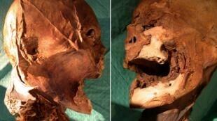 Мумифицированная голова Генриха IV