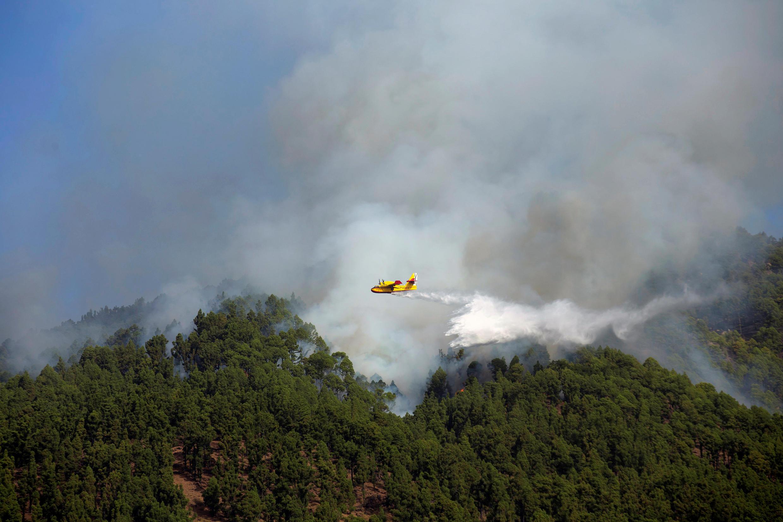 O incêndio destruiu milhares de hectares de áreas preservadas