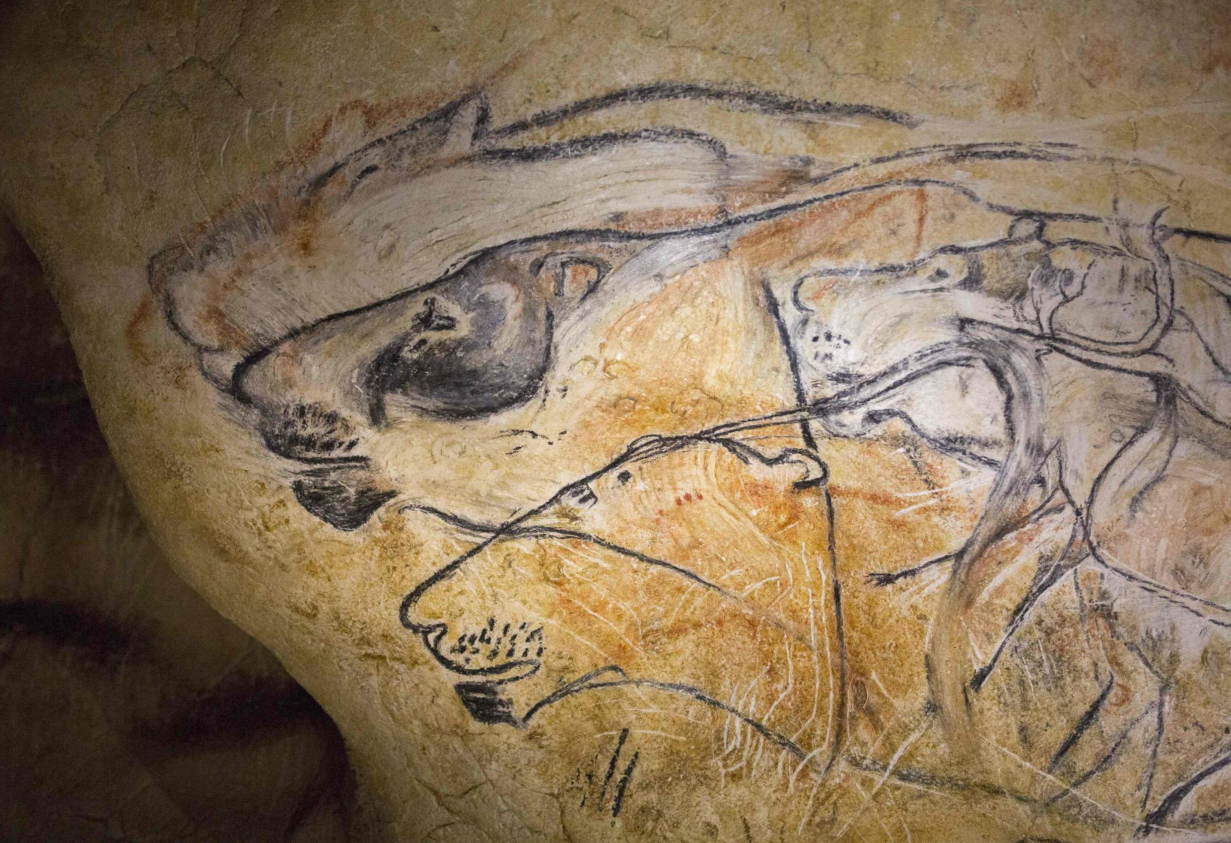 Drawings showing lions in the replica of the Chauvet Caves, Vallon Pont-d'Arc in the Ardeche region, 8 April 2015.