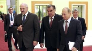 De gauche à droite: les présidents Alexandre Loukachenko (Biélorussie), Emomali Rahmon (Tadjikistan) et Vladimir Poutine (Russie), le 15 septembre 2015 à Douchanbé, au Tadjikistan.