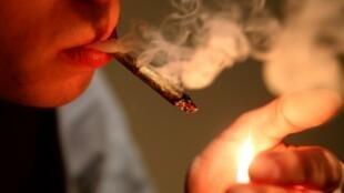 La France compte 900 000 fumeurs quotidiens de cannabis.