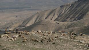 La vallée du Jourdain près de Jéricho, en Cisjordanie.