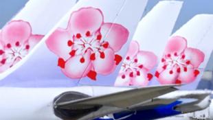 """台湾""""中华航空""""花样标识"""