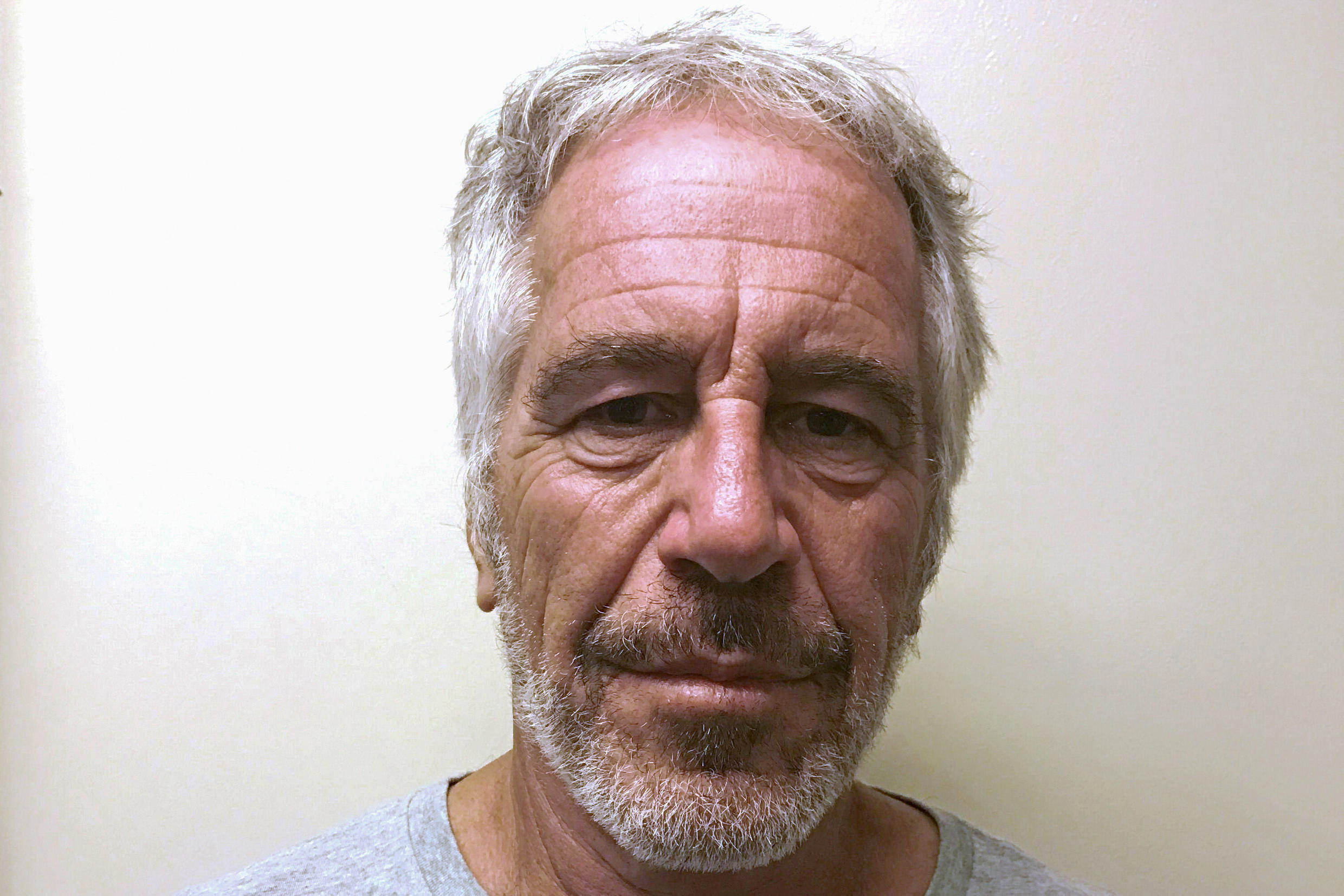 Jeffrey Epstein appears in a photograph taken for the New York State Division of Criminal Justice Services' sex offender registry March 28, 2017 and obtained by Reuters July 10, 2019. New York State Division of Criminal Justice Services/Handout/File Phot