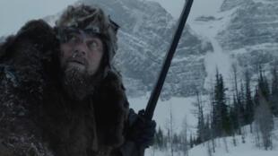 Une photo de l'acteur américain Leonardo DiCaprio dans <i>The Revenant</i>, le film du réalisateur et producteur mexicain Alejandro González Iñárritu.