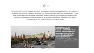 La page d'accueil du site expatmosaïque.fr