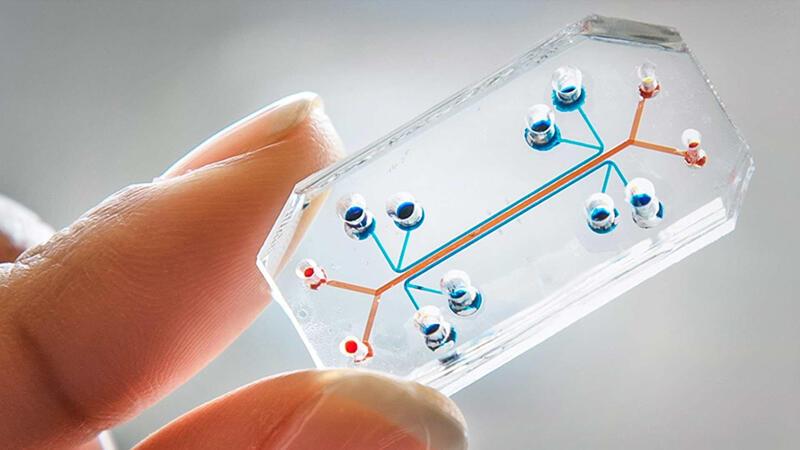 图为网络芯片技术图
