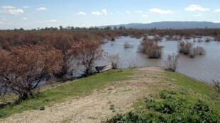 La rivière Evros, frontière naturelle entre la Grèce et la Turquie, en octobre 2005.