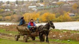 Schitu, à 80 km au sud de Bucarest (Roumanie).