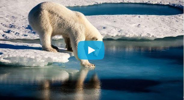 聯合國政府間氣候變化專門委員會(Giec)公布一份400頁報告
