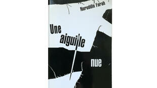 """La couverture de livre """"Une aiguille nue"""""""