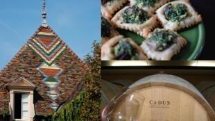 A Borgonha atrai tanto pela sua gastronomia (os famosos pratos a base de escargots, os vinhos brancos e tintos) quanto pela sua arquitetura (como estes telhados coloridos que podemos ver nas ruas de Dijon).