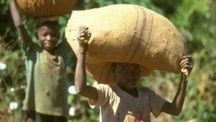 Des jeunes enfants soumis au travail en Afrique de l'Ouest.