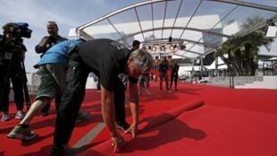 O desenrolar do tapete vermelho é um dos últimos preparativos para abertura do Festival de Cannes.