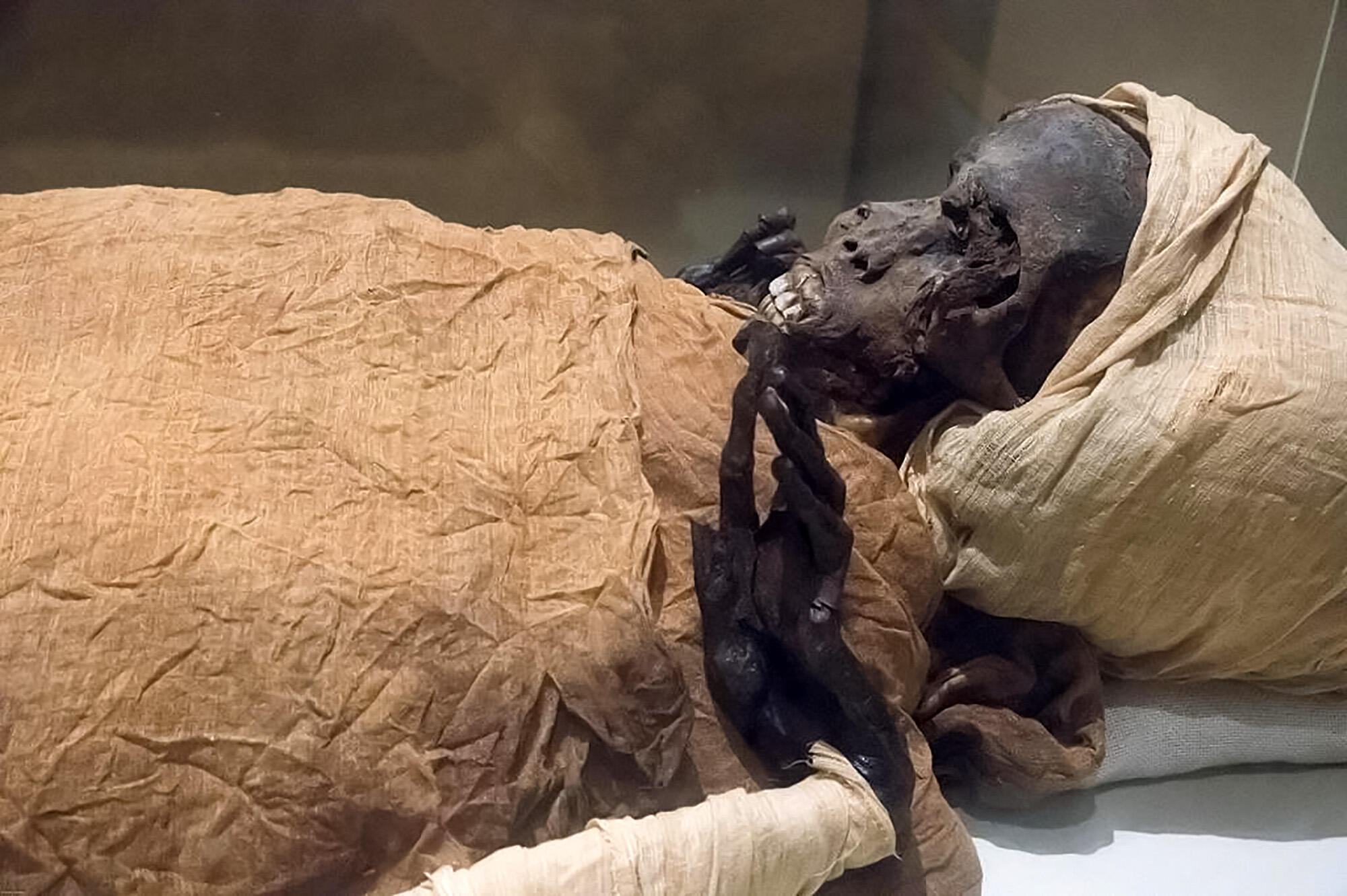 """The mummified remains of Pharaoh Seqenenre Taa II, """"the Brave"""", who reigned over southern Egypt some 1,600 years before Christ, are the oldest of the 22 mummies being paraded through the streets of Cairo, 3 April 2021"""