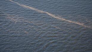 Restos na maré negra no Golfo do México.