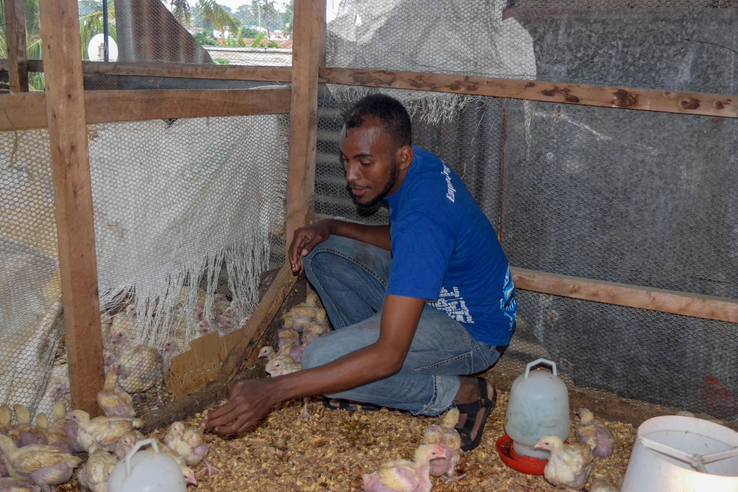 26-year old Abubakar Omar, a beneficiary of the Red Cross programme, works on a poultry farm run by the Mtopanga Lazio Youth Club in Mombasa county.