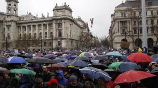 Gần 15 000 người đội mưa lạnh hôm 15/3/2016 biểu tình chống luật  giáo dục tại Budapest.
