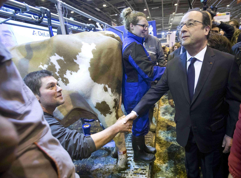 Франсуа Олланд на открытии сельскохозяйственного салона в Париже, 2017.