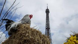 Манифестация фермеров у Эйфелевой башни 24/05/2014