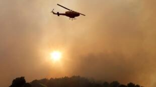 Incêndio em Carros, perto de Nice, no sul da França, destruiu 90 hectares de floresta