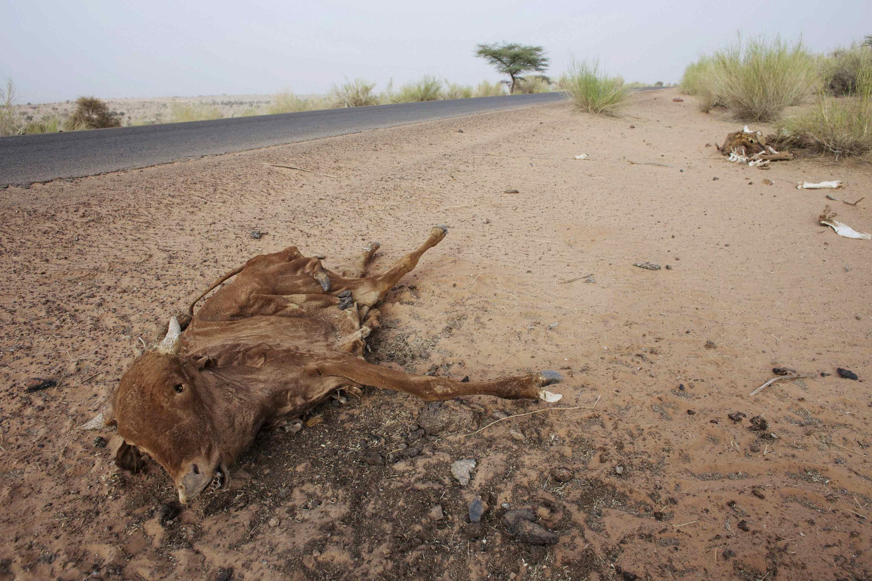 L'eau est aujourd'hui un enjeu de premier ordre pour la planète. Depuis longtemps déjà, le désert gagne du terrain sur les zones de peuplement, comme ici dans le Sahel mauritanien.