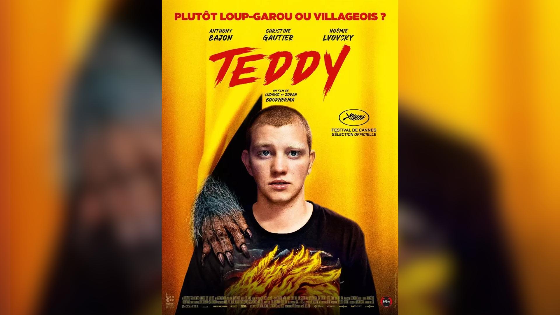 Affiche Film Teddy