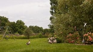 Турень - сад-огород Франции