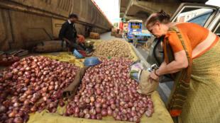 Des marchands de légumes vendent des oignons au bord de la route, à Noida, en Inde.