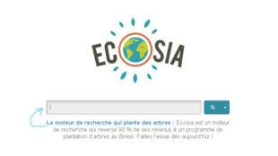 Plus de 15 828 arbres plantés depuis 2011, un chaque 73 secondes, en utilisant le moteur de recherche Ecosia.
