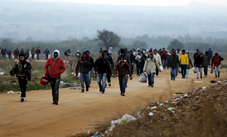 Des migrants marchent dans la campagne serbe, dans les environs de Miratovac, en venant de Macédoine, le 24 octobre 2015.
