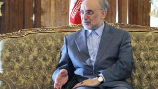 علی اکبر صالحی درگفت و گوی اختصاصی باخبرگزاری جمهوری اسلامی (ايرنا)