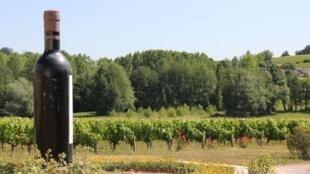 Vignoble bordelais (image d'illustration).
