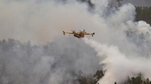 Пожарный самолет борется с пожаром в Испании