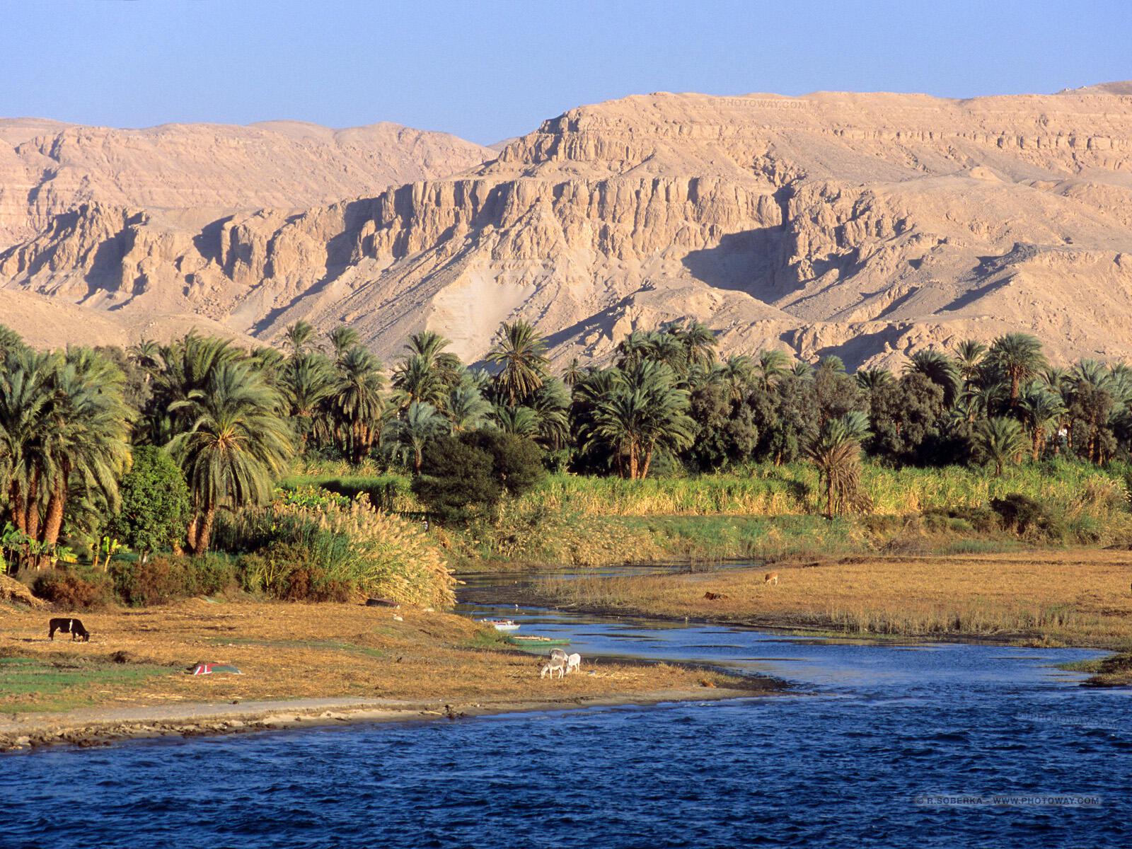 A paisagem paradisíaca do rio Nilo, no Egito, é palco de festas.