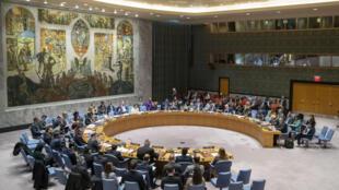 Le Conseil de sécurité de l'Organisation des Nations unies.