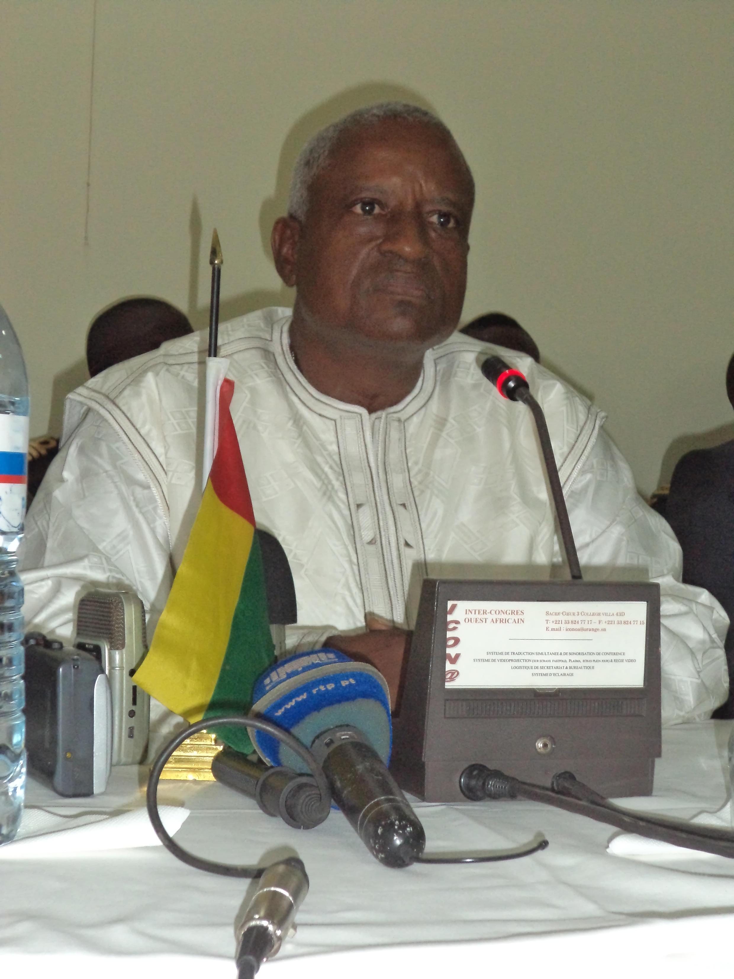 Serifo Nhamadjo, Presidente de Transição